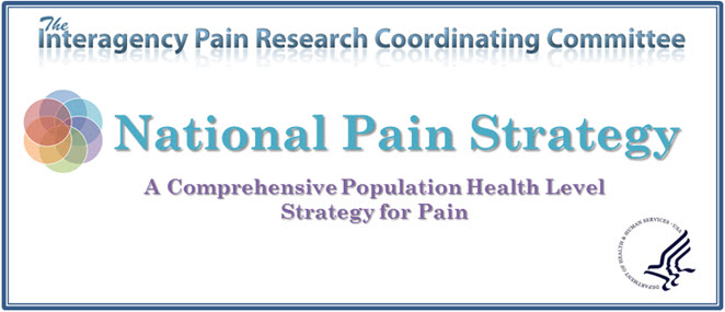 National Pain Strategy
